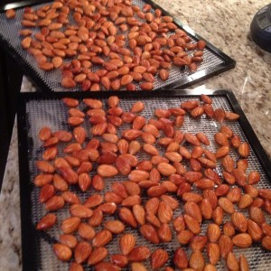 Almonds Dehydrated