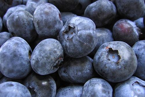 blueberriesforbars4 (1)